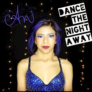 Dance The Night Away by Ani Download