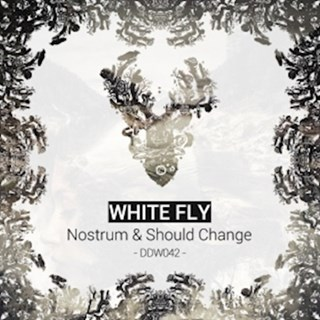 Should Change by White Fly Download