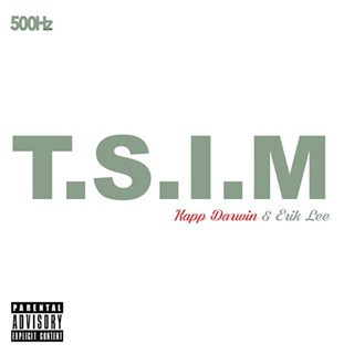 TSIM by The Anthem Download