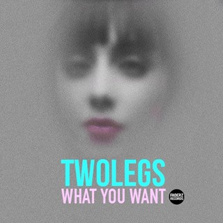 What You Want by Two Legs Download