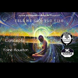 Tell Me How You Vibe by Conceptz ft Toine Houston Download