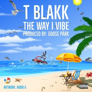 The Way I Vibe by T Blakk Download