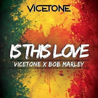 Is This Love by Bob Marley X Vicetone Download