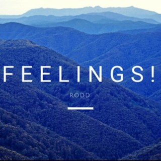 Feelings by Rodd Download