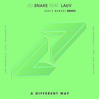 A Different Way by DJ Snake ft Lauv Download