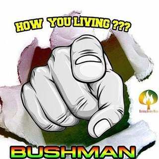 How You Living by Bushman Download