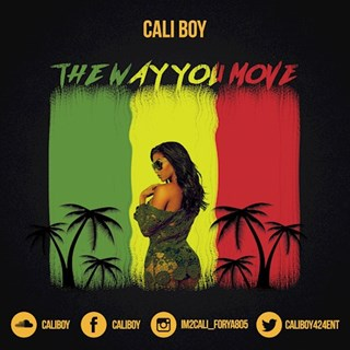 The Way You Move by Cali Boy Download