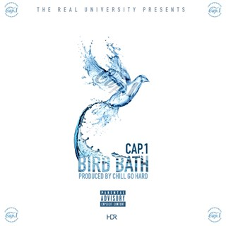 Bird Bath by Cap 1 Download