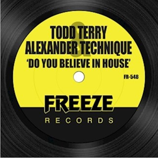 Do You Believe In House by Todd Terry & Alexander Technique Download