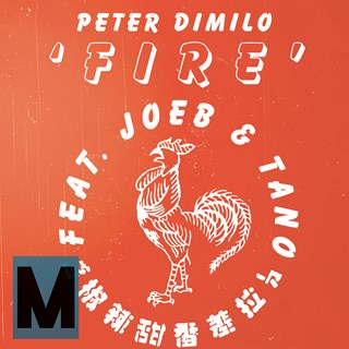 Fire by Peter Dimilo ft Joeb & Tano Download