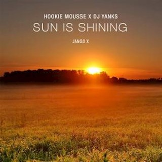 Sun Is Shining by Hookie Mouse & DJ Yanks Download