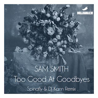Too Good At Goodbyes by Sam Smith Download