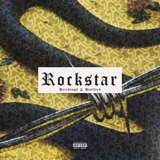 Rockstar vs Party Like A Rockstar by Post Malone vs Shop Boyz Download