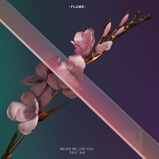 Never Be Like You by Flume ft Kai Download