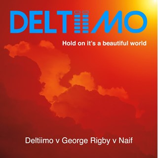 Hold On Its A Beautiful World by Deltiimo, George Rigby & Naif Download