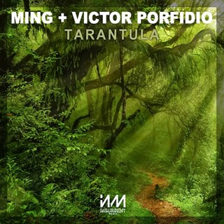 Tarantula by Ming & Victor Porfidio Download