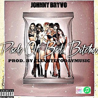 Pack Of Bad Bitches by Johnny Bryvo Download