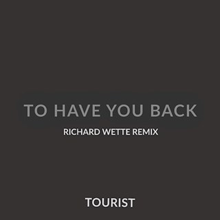 Have You Back by Tourist Download