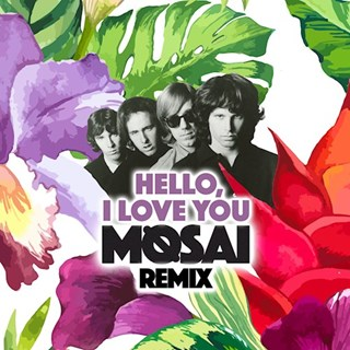 Hello I Love You by The Doors Download