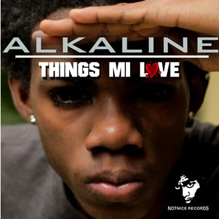 Things Mi Like by Alkaline Download