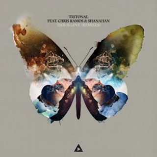 This Is Love by Tritonal ft Chris Ramos & Shanahan Download