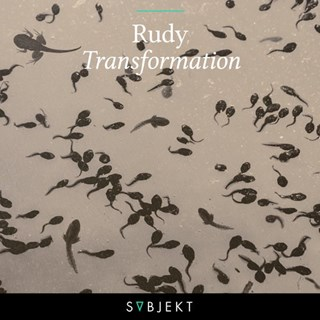 Transformation by Rudy Download