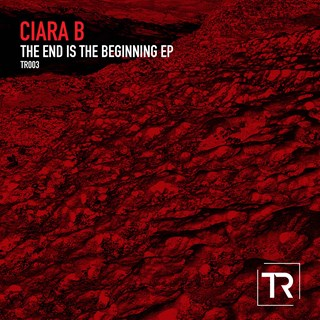 The End Is The Beginning by Ciara B Download
