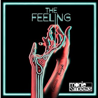 The Feeling by Monie & Meeks Download