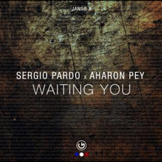 Waiting You by Sergio Pardo & Aharon Pey Download