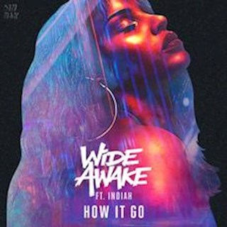 How It Go by Wide Awake ft Indiah Download