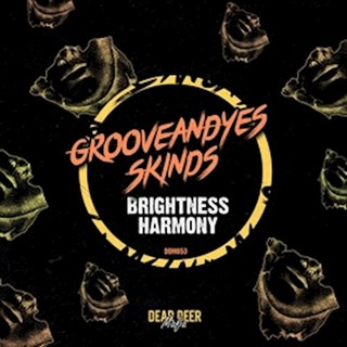 Brightness Harmony by Groove & Yes ft Skinds Download