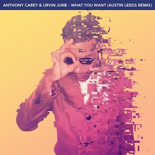 What You Want by Anthony Carey & Urvin June Download