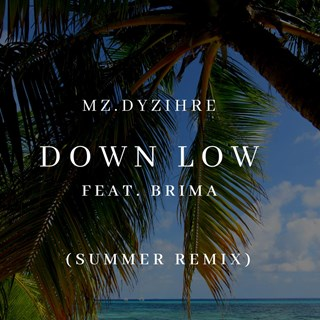 Down Low by Mz Dyzihre Download