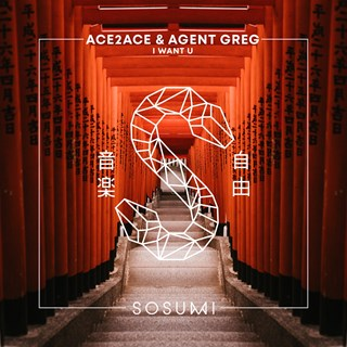 I Want U by Ace2ace & Agent Greg Download