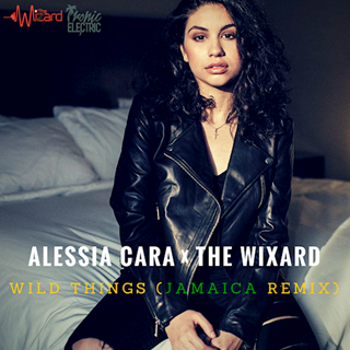 Wild Things by Alessia Cara Download
