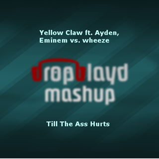 Till The Ass Hurts by Yellow Claw ft Ayden & Eminem vs Wheeze Download