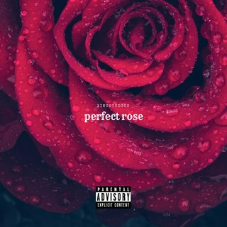 Perfect Rose by Mc Drill Download