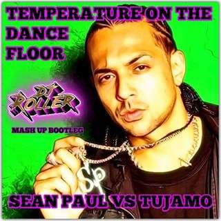 Temperature On The Dancefloor by Sean Paul vs Tujamo Download