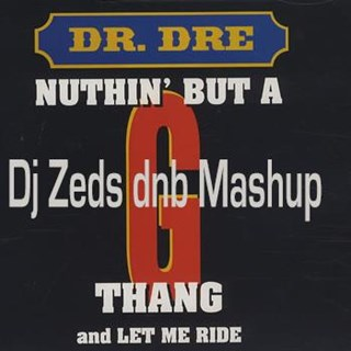 Nuthing But A Dnb Thang by Dr Dre Download