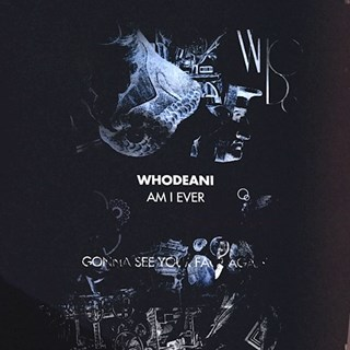 Am I Ever Gonna See Your Face Again by Whodeani Download