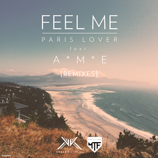Feel Me (feat. A*M*E) by Paris Lover Download