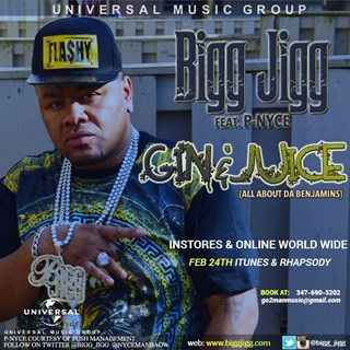 Gin & Juice by Bigg Jigg ft Pnyce Download