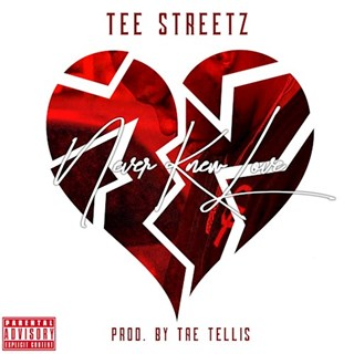 Never Knew Love by Tee Streetz Download