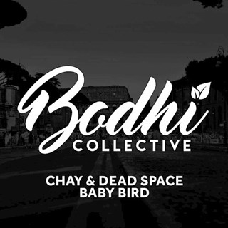 Baby Bird by Chay & Dead Space Download