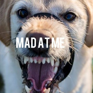 Mad At Me by Albert Download