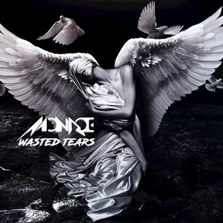 Wasted Tears by Monroe Download