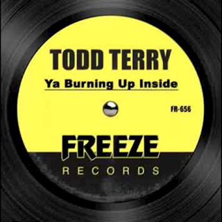 Ya Burning Up Inside by Todd Terry Download