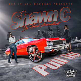 Pull Up by Shawn C Da Hood Accountant Download