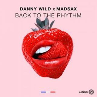 Back To The Rhythm by Danny Wild & Madsax Download