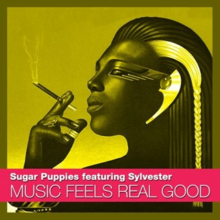 Music Feels Real Good by Sugar Puppies ft Sylvester Download